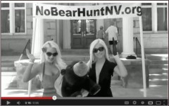 Bunny Ranch Bear Hunting Protest